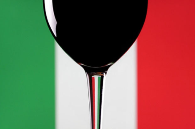 Vinitaly 2013 - Discover the best Italian wines