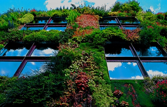 green walls, vertical walls, green wall rozzano